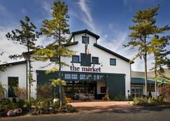 The Pinehills: The Pinehills - The Market